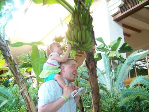 Live Banana trees in the open-air lobby!